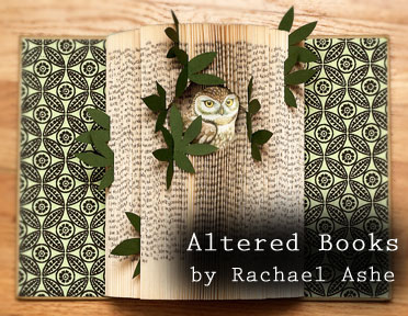 Rachael-Ashe--owl